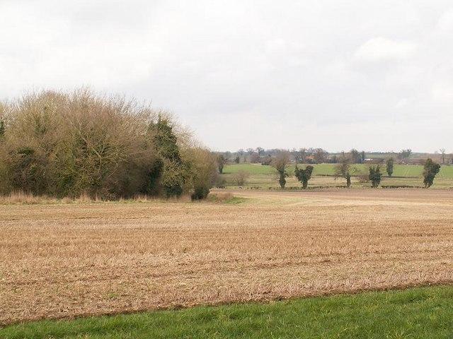 Countryside near Quidenham Park