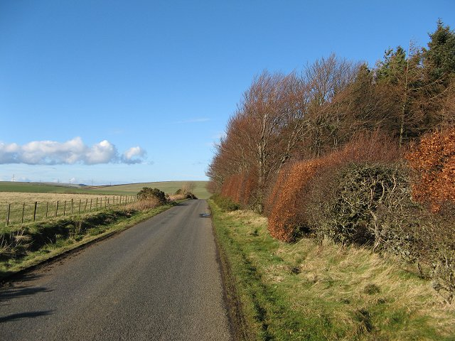 Quixwood Moor