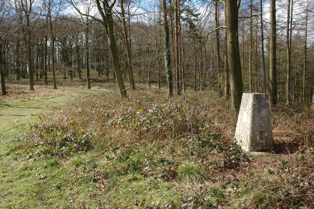 Trig point on Burton Hill