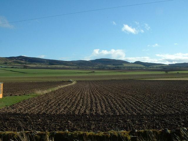 Perthshire Fieldscape