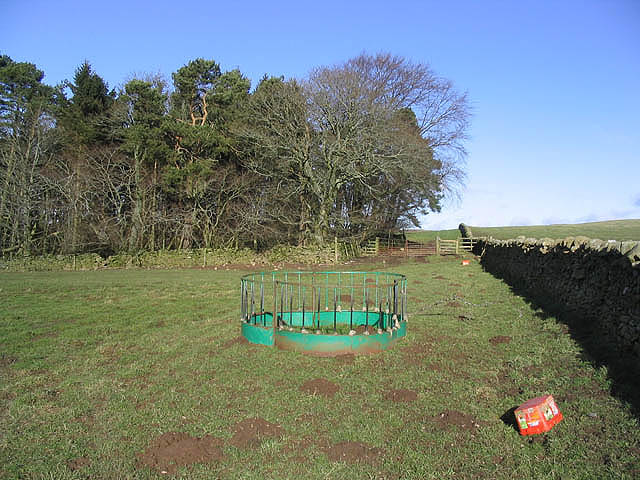 Field corner