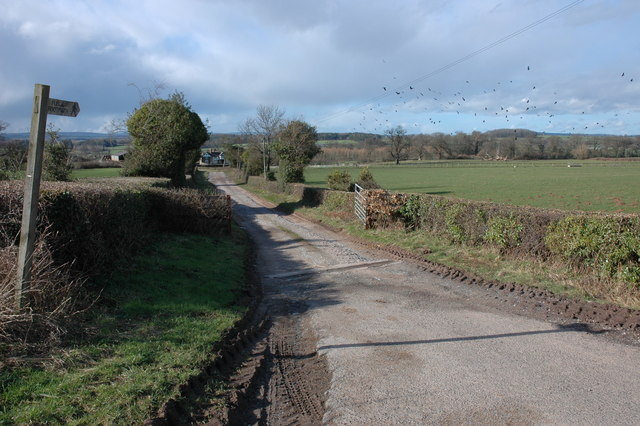 Farm driveway to Fenhampton