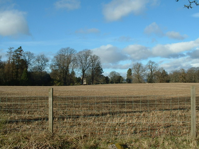 Ploughed field in early March