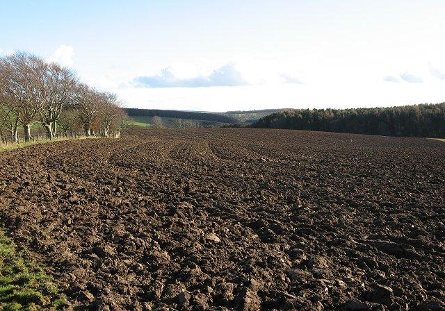 Ploughed field, Blackburn Mill