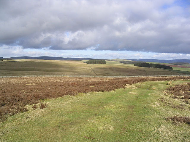 Lauder Common