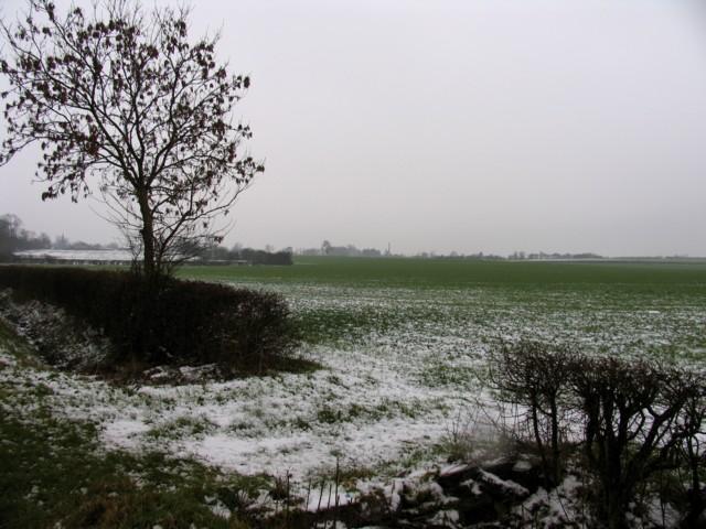 Featureless Fields