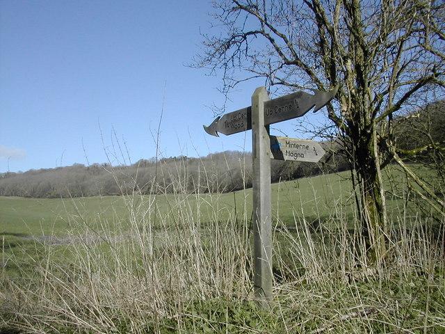 Fingerpost north-west of Up Cerne