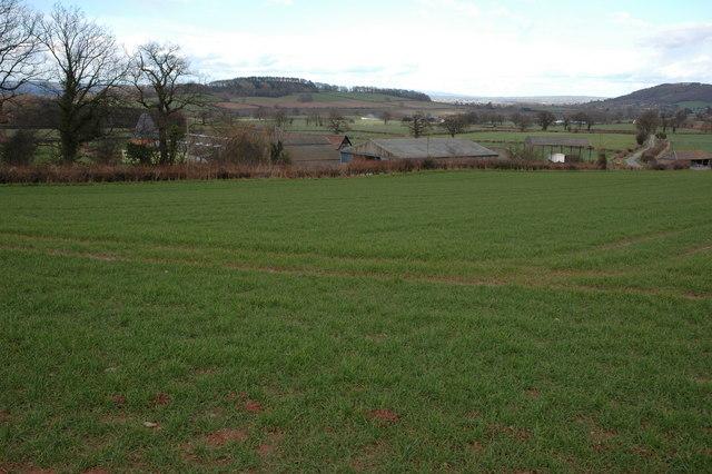 Wootton, near King's Pyon