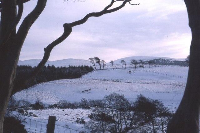 Snowscene near Low Ballochdowan