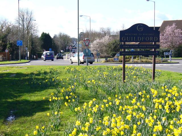 Springboard into Guildford