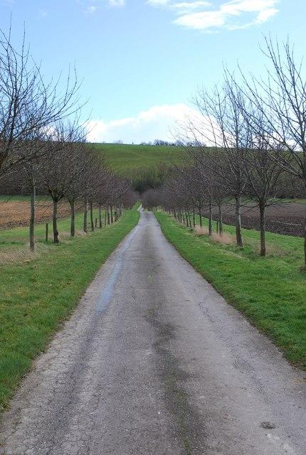 Lane behind Manor Farm