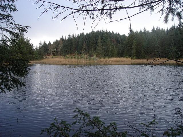 Lochan in forestry northeast of Oban and northwest of Glencruitten summit