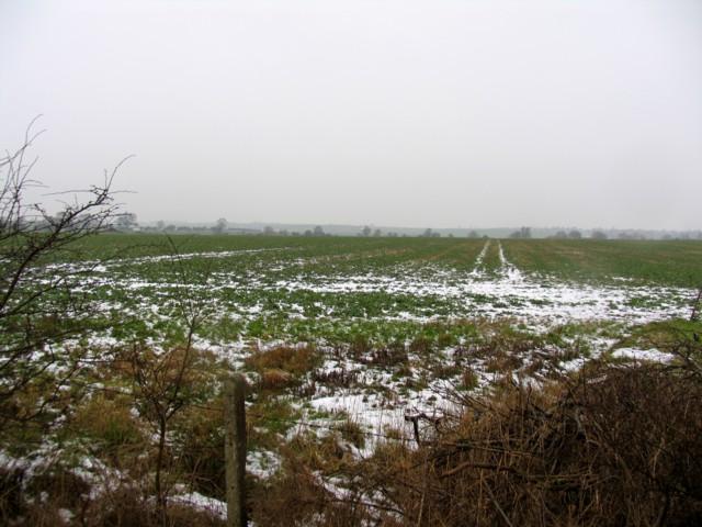 Field with wheeltracks
