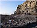 SS8873 : Dunraven Bay, Glamorgan Heritage Coast by Alan Bowring