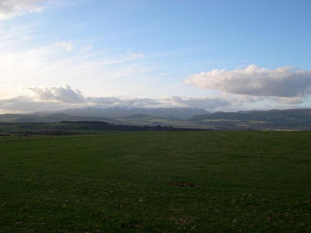 Fields of Brae Farm