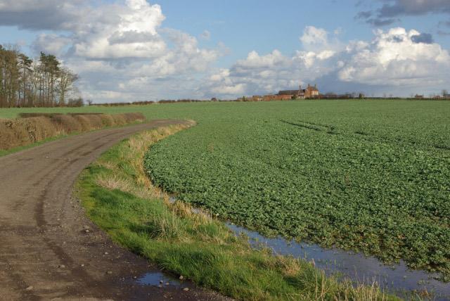 Farmland near Ratcliffe Culey