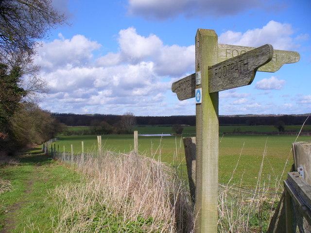 Footpath By Old Park Farm, Kingsley
