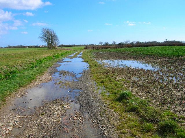 Bridleway to Horsebridge