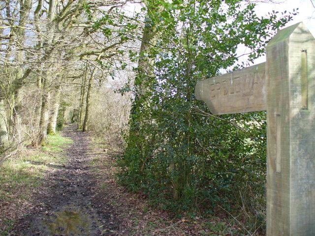 Bridleway Past Straits Inclosure