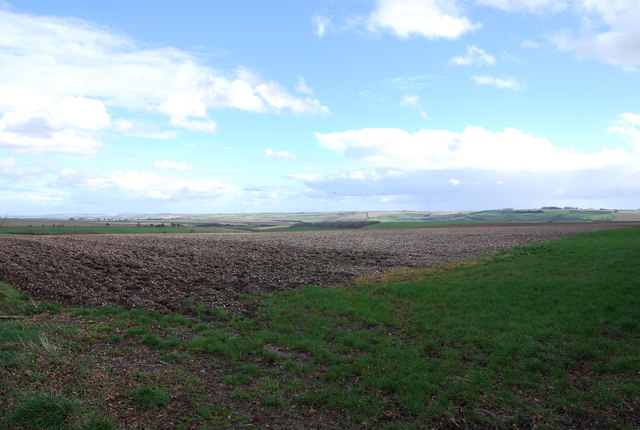 Ploughed field on Compton Down