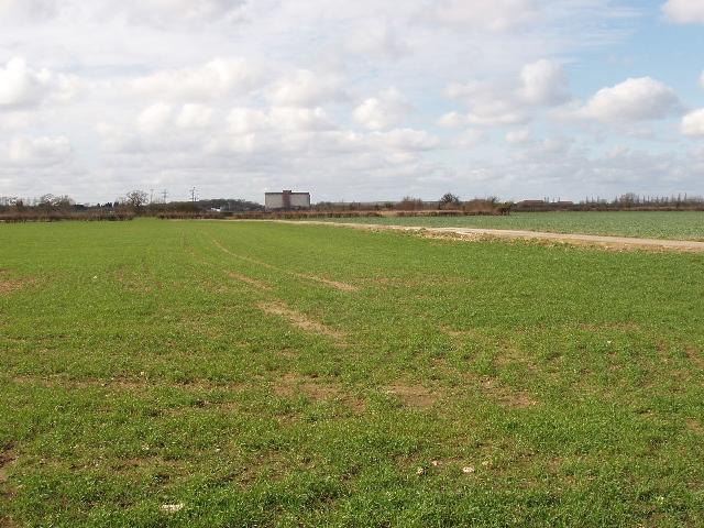 Wheat field, view towards Cutteslowe