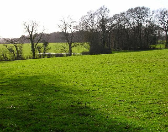 Low Weald Landscape