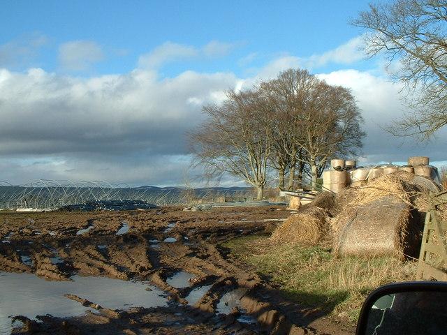 Caddam Farmland and Polytunnel Frames