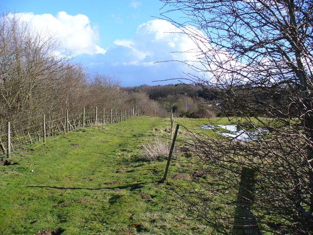 Bridleway to Sleaford