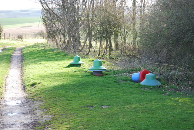 Pheasant Feeders by Hut Bottom