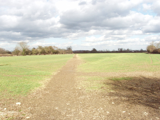 Footpath maintained through new crops.