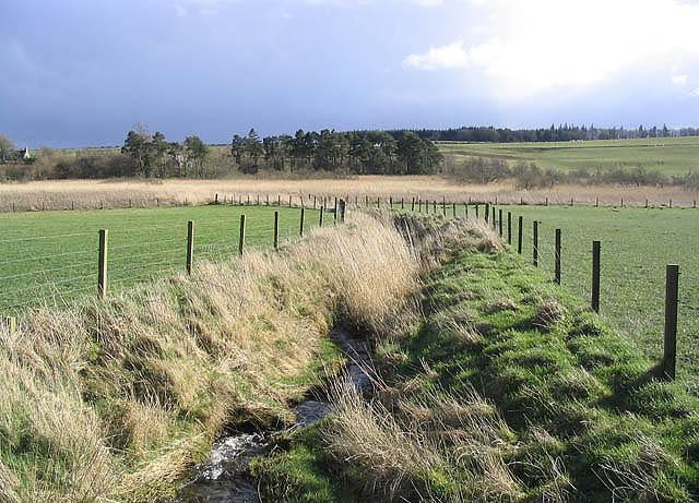 Tandlaw Moss