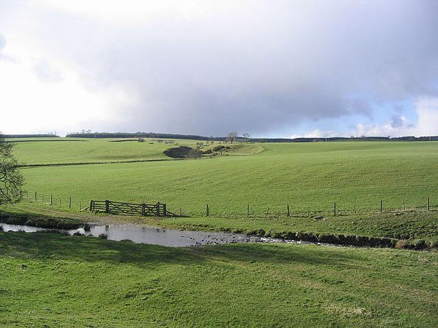 Farmland at Hassendean