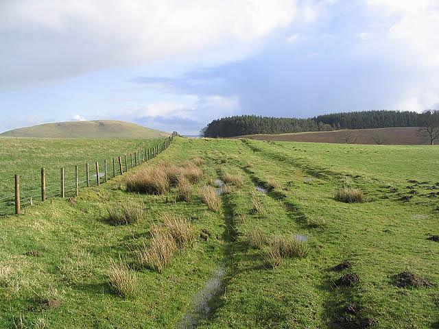 Fields at Newlands