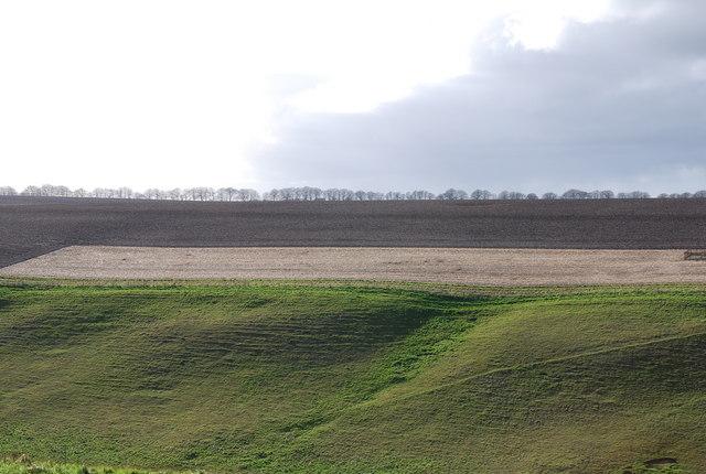 Hydon Hill across Hut Bottom