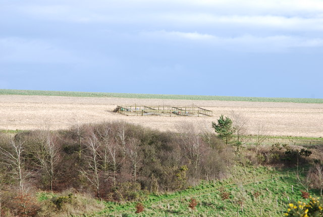 Pheasant Pens on Stoke Down
