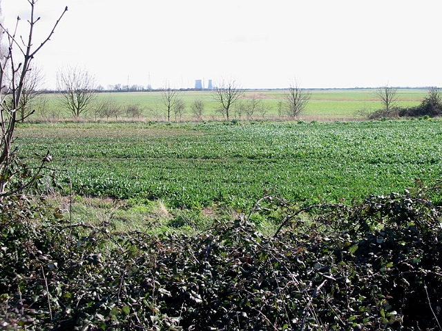 Looking across Monkton Marshes