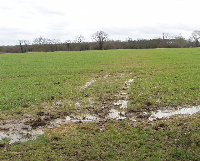 Bridleway across wet field