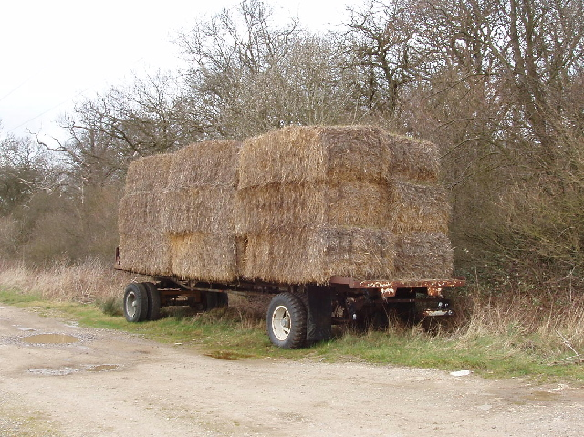 Trailer and bales