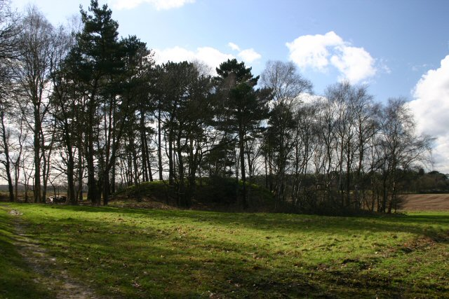 Tumulus at Garboldisham Common