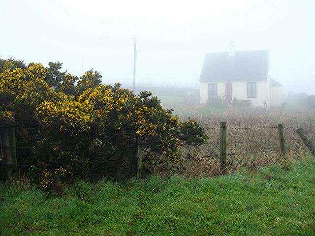House on a misty A1, near Lamberton Shiels