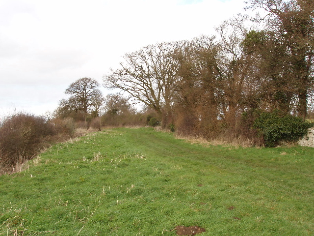 Grassy track in Woodeaton