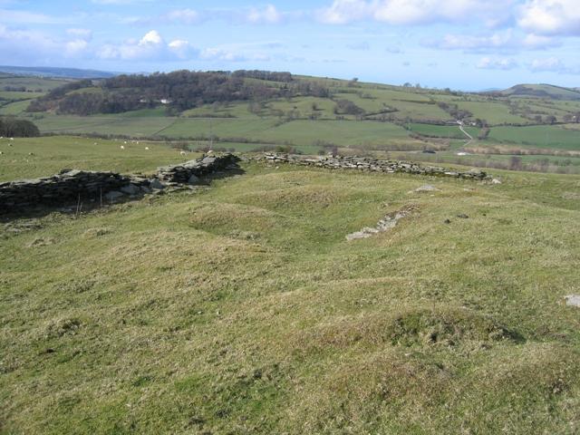 Stone Walls and Pasture