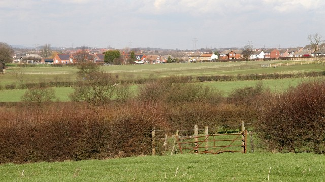 View Over Fields