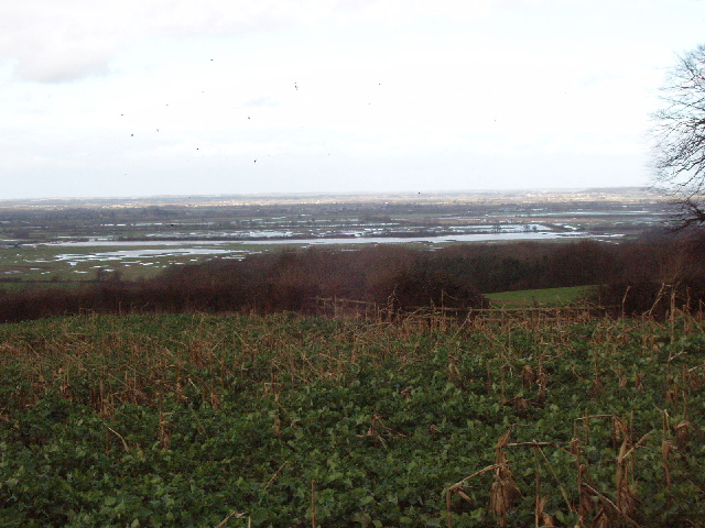 Otmoor flooded,from  Common Road, Beckley
