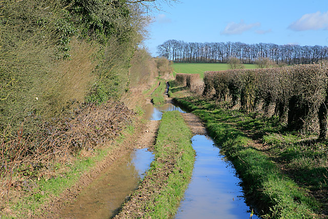 Wayfarer's Walk north of Lone Barn House