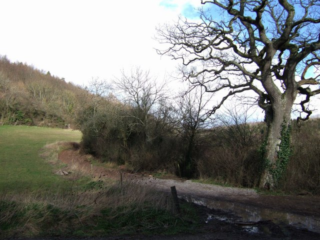 Bridleway to Netherclay