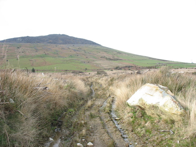 Rutted bridleway  through clear  fell