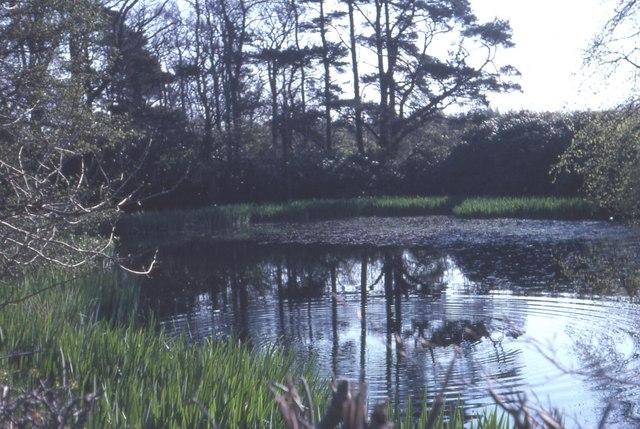 Auchairne Pond