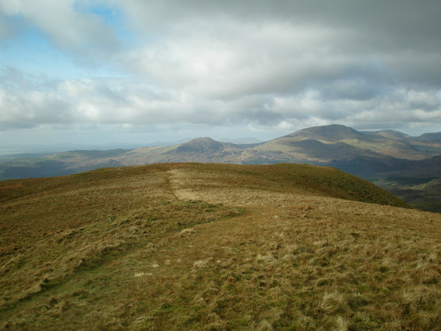 Western Flank of Moelwyn Bach