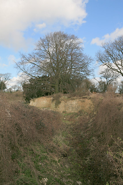 Disused chalk pit on Becket's Down